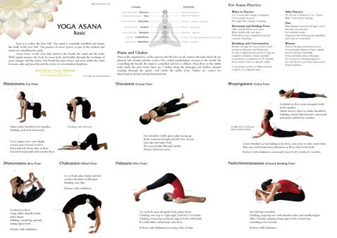 Your Yoga Literature Sampler